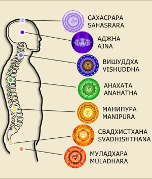 Open the chakras with the Spinor