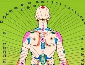 Зоны Захарьина-Геда со стороны спины
