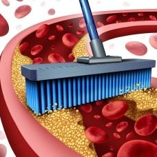 Очистка крови аппаратом Спинор