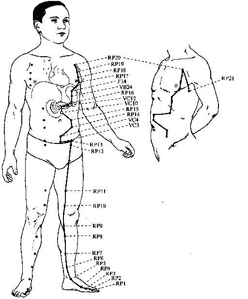 Канал селезенки-поджелудочной железы