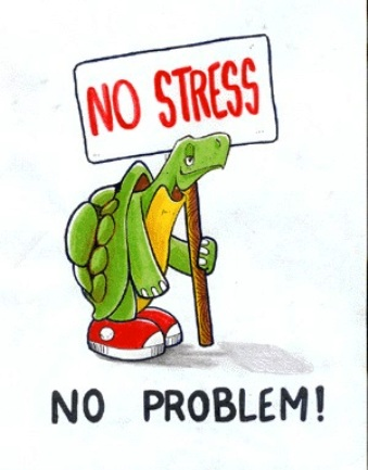 Стресс и его последствия. Программа «Антистресс» аппарата Спинор